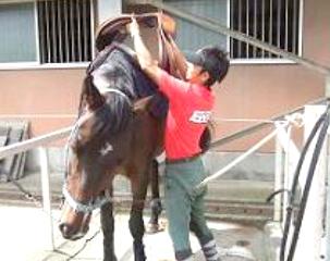 馬装(ばそう)